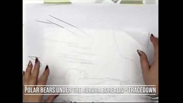 Polar Bears under the Aurora Borealis - Tracedown